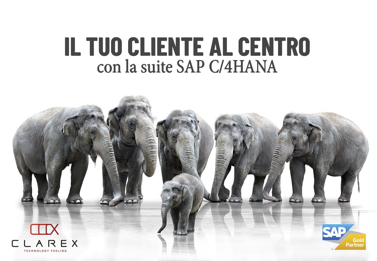 """Immagine di Elefanti che proteggono un elefantino con la scritta"""" il tuo cliente al centro con la suite C/4HANA"""""""