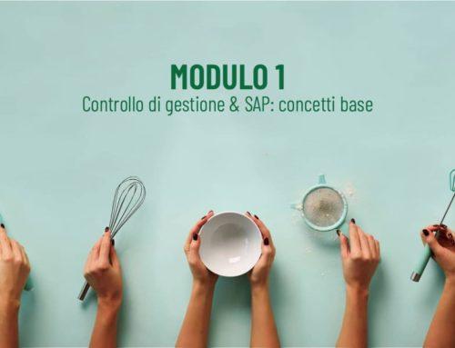 Modulo 1 Corso di Controlling
